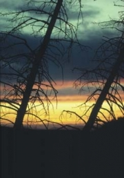 sunsets03